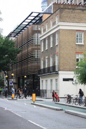 By using a 'veil' of terracotta fins this building on Tavistock Place achieves a monolithic scale completely lacking the intermediate level of articulation (window openings, balconies etc.) characteristic of the Conservation Area. It fails to adequately acknowledge its neighbours.
